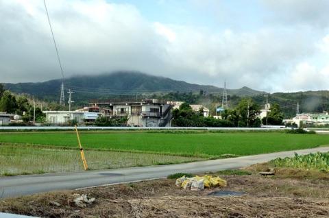沖縄県恩納村でも稲作が行われています