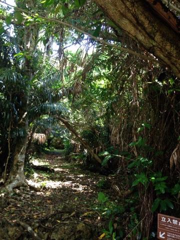 久高島のアマミキヨが住んだと言う霊地