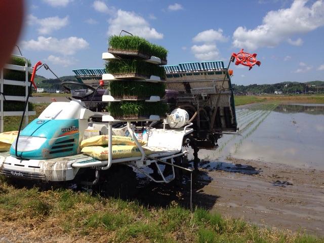 米農家の画像