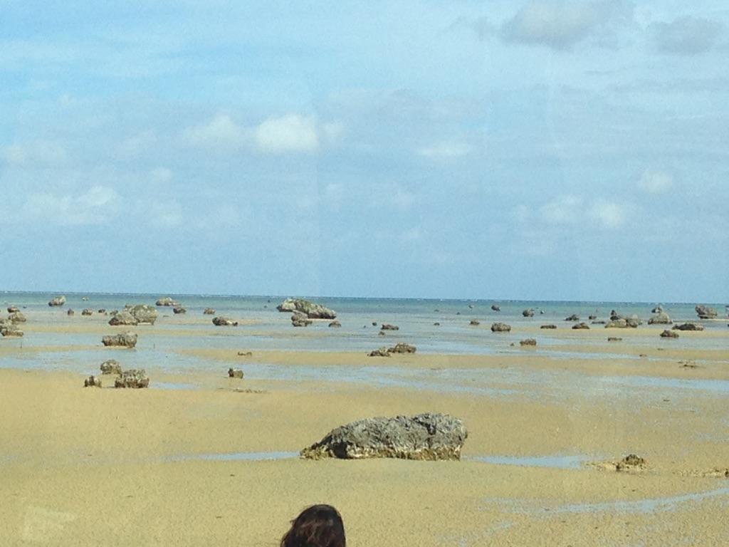 明和の大津波で打ち上げられた岩という伝説、宮古島
