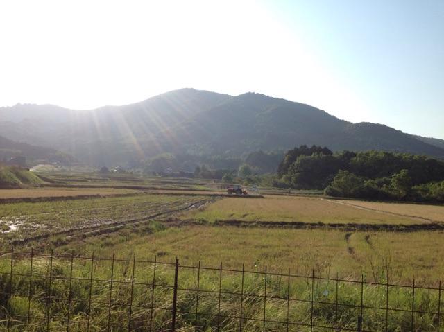 大分の農業世界遺産(国東半島)