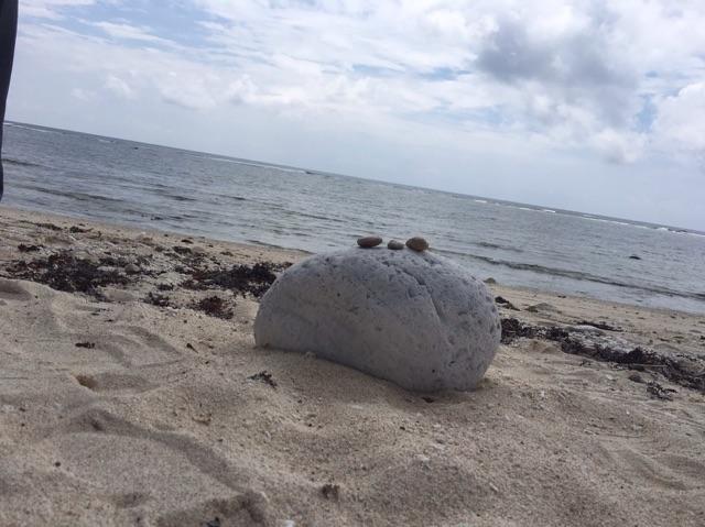 久高島の浜はウミガメが産卵する浜としても有名です。