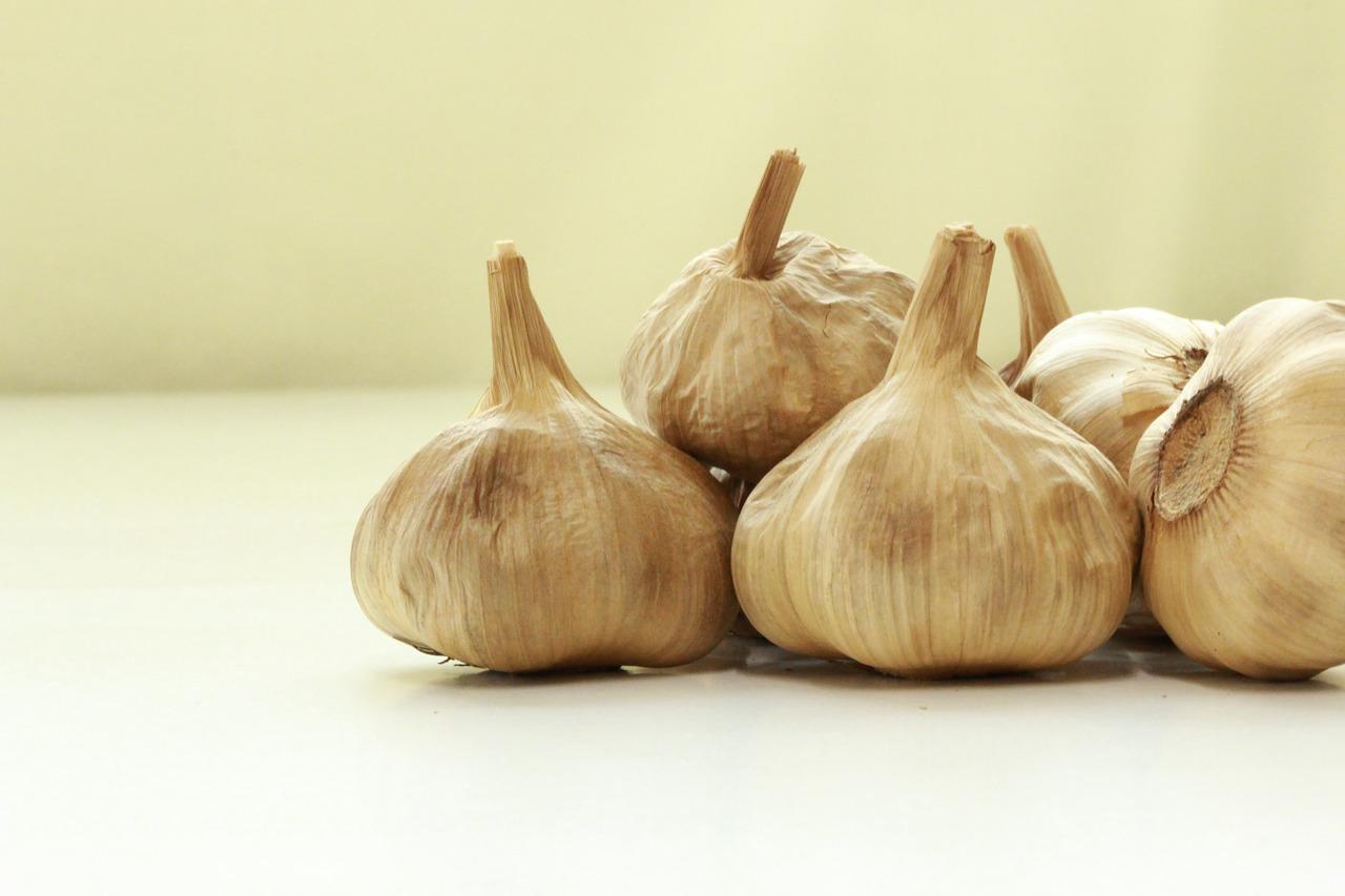 garlic recipi