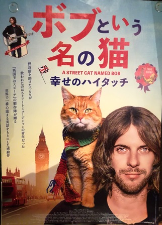 street cat named BOB movie